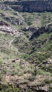 Looking down Sabino Canyon