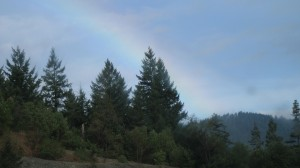 Rainbow on I-5 highway